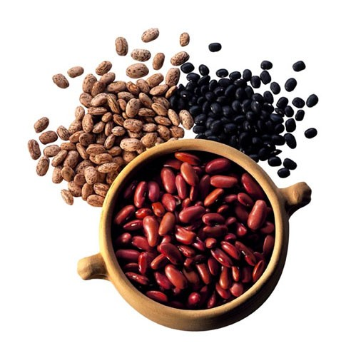 Legumes Products